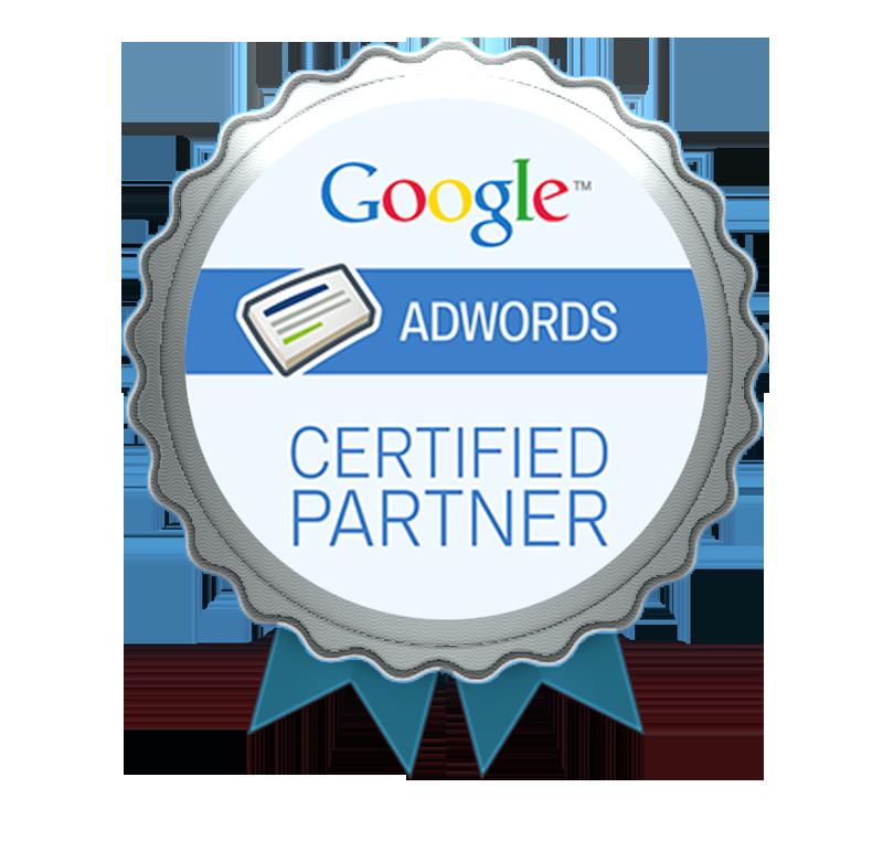 Certificação Anual Google